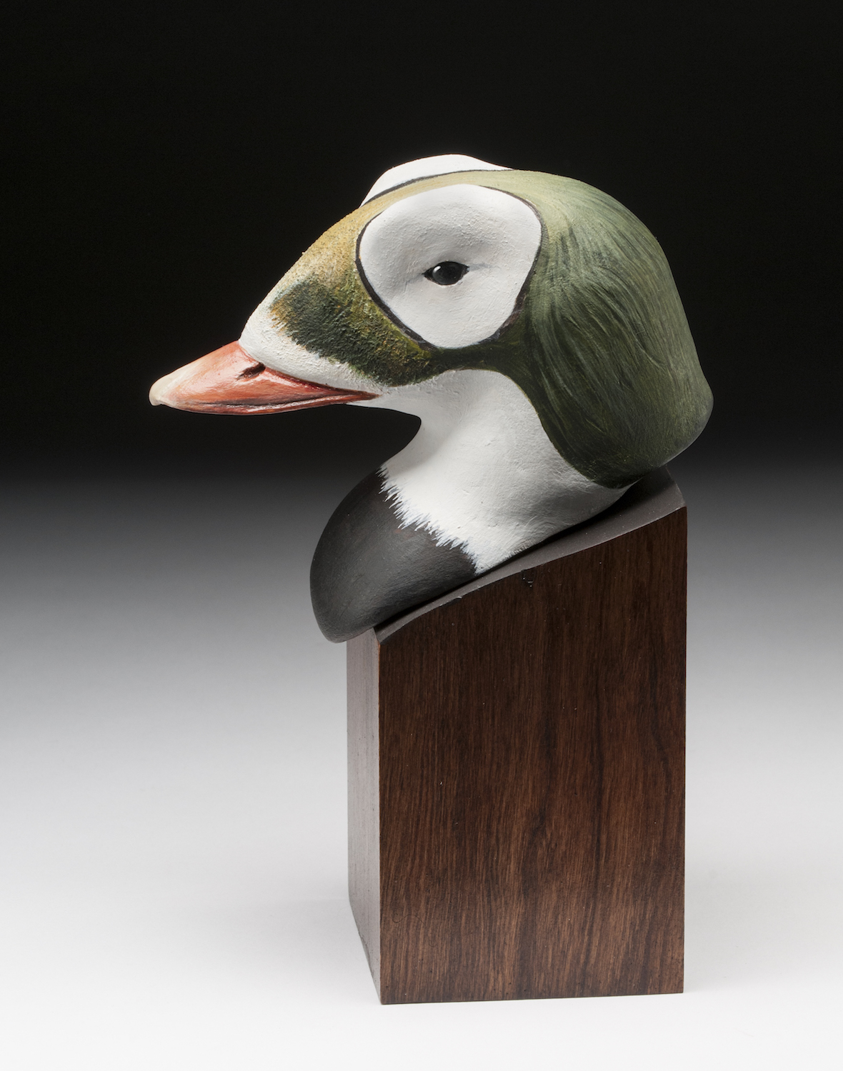 Richard Whittom Duck Head Purchase Award: Frank Macfarlane