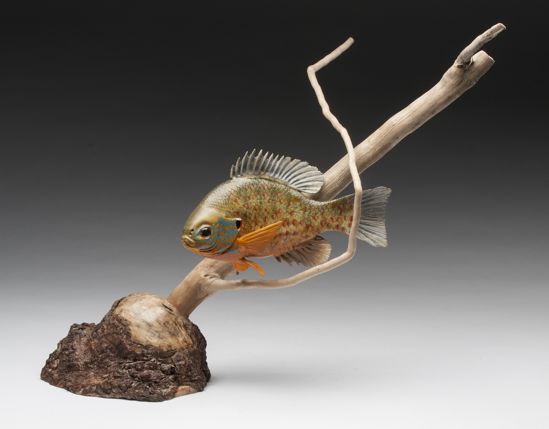 PCC2017- 1st Best of Show Novice - Dennis Brown pumpkinseed fish