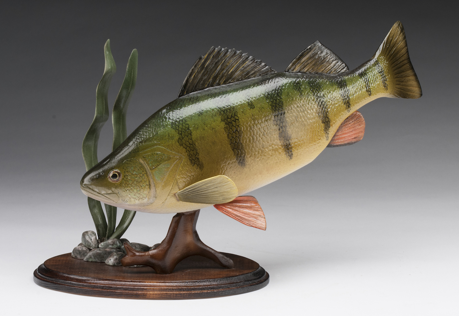 PCC2017- 3rd Best of Show Open - Dale Kotowsky yellow perch