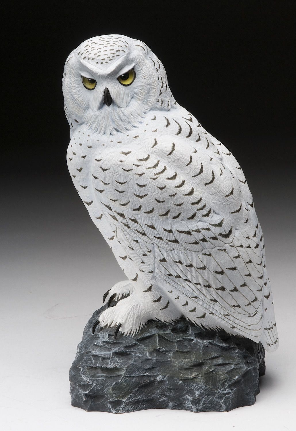 2018 Novice 1st Best of Show - Greg Apland - snowy owl